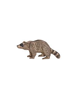 Raccoon Pin