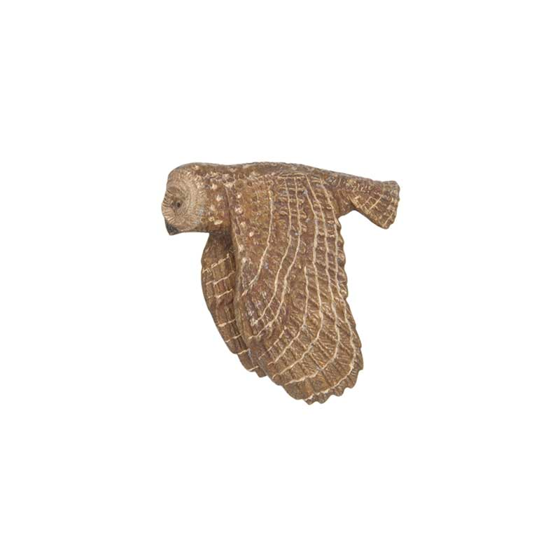 Spotted Owl Pin, Bronze