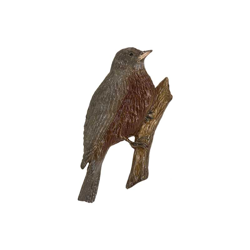 Robin Pin, Bronze