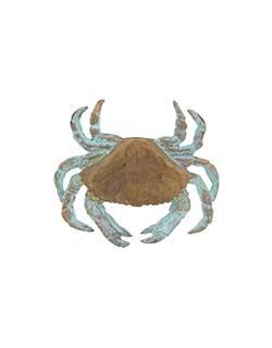 Dungeness Crab Pin