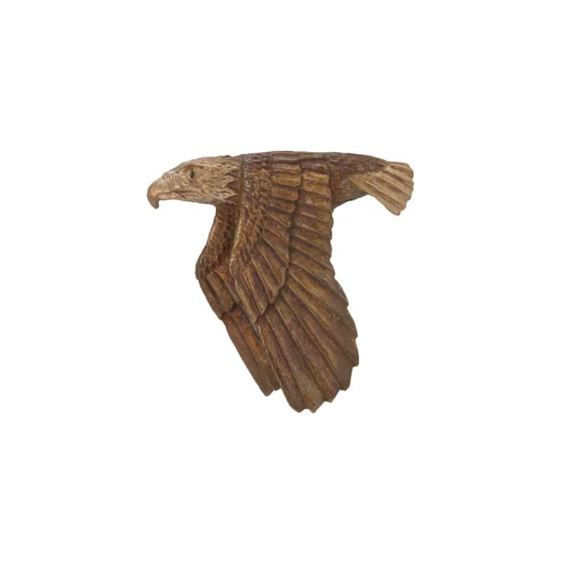 Flying Eagle Pin, Bronze