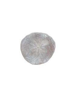 Sand Dollar Pin