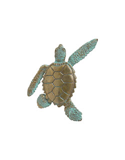 Sea Turtle Pin