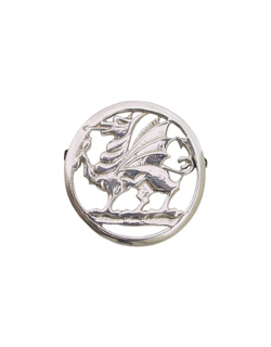 Welsh Dragon Pin