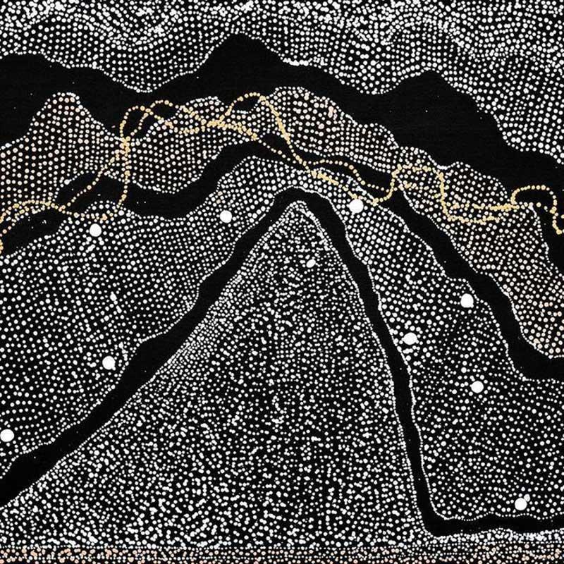 Water Dreaming Artwork by Julie Nangala Robertson