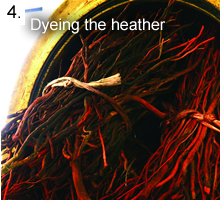 Dyeing the Heather