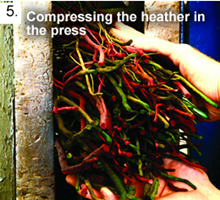 Compressing the Heather in the Press